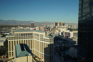 Vdara Condo - Las Vegas High Rise Condos for Sale (28)