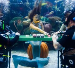 Silverton Las Vegas Under water poker game
