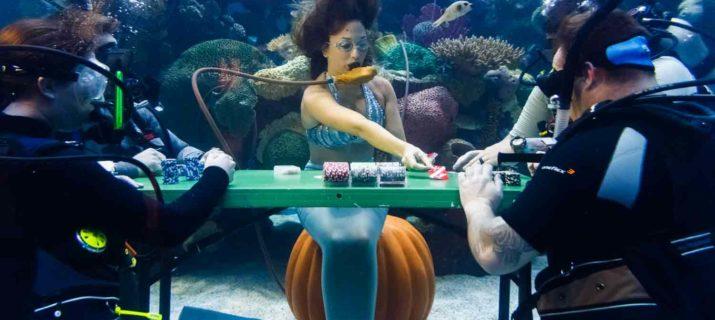 Silverton Las Vegas Under water poker game