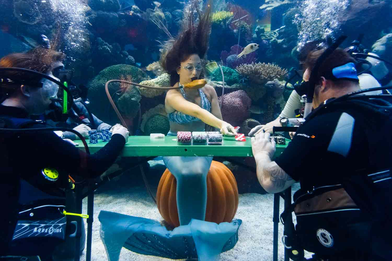 Things To Do Around Treasure Island Las Vegas